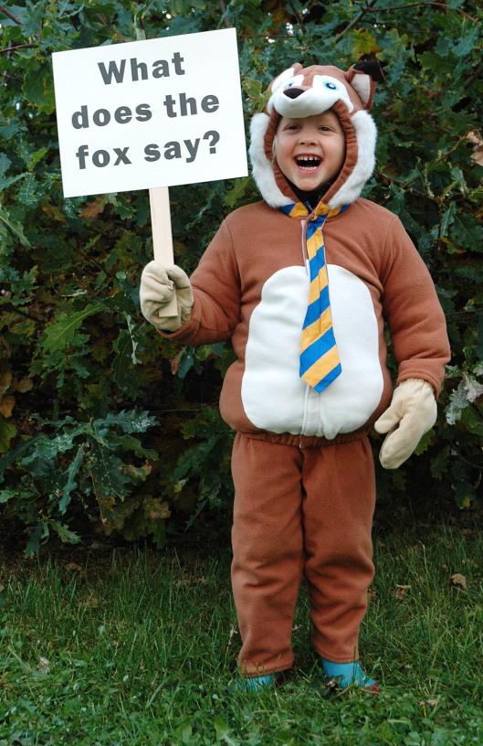 halloween - fox1
